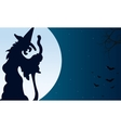 Silhouette of witch and bat Halloween vector image