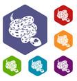 anaconda snake icons hexahedron vector image vector image