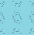 cute dolphins aquatic marine nature ocean vector image