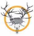 nest on the bones vector image