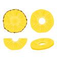 pineapple slice fruit vector image vector image