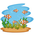 scene with clownfish swimming in sea vector image vector image