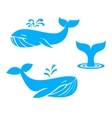 Whales icons flat design elements vector image vector image