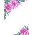 elegant background with peony flowers vector image