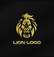 gold lion logo template vector image