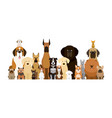group dog breeds vector image vector image