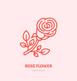 red rose flat line icon flower shop vector image