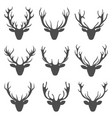 Set deer heads collection stag horns isolated on