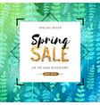 spring sale poster with green leaves vector image