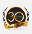 Template 30 years anniversary vector image