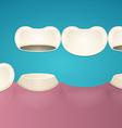 Tooth enamel vector image vector image