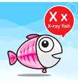 X X ray fish color cartoon and alphabet for vector image