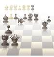 with chess pieces vector image