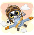 cute raccoon is flying on a plane vector image vector image