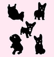 doggy silhouette vector image vector image