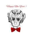 Sketch monkey face with red bow Hand drawn doodle vector image vector image