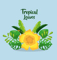 tropical leaves invitation card yelow flower vector image