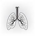 lungs sign human internal organ anatomy icon vector image
