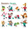 animals sports vector image