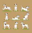 cartoon color funny puppy icons set vector image vector image