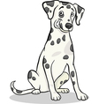 dalmatian purebred dog cartoon vector image