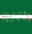 pink flamingo with tropical jungle frame vector image vector image