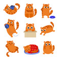 set of cute kitten with different emotions the vector image