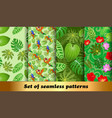 set seamless patterns tropical flora and fauna vector image vector image