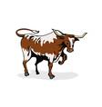 Texas Longhorn Bull vector image vector image