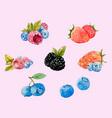 watercolor berries set vector image vector image