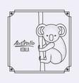 australia koala in frame and monochrome silhouette vector image