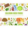 calcium rich foods banner template high calcium vector image