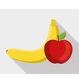 Flat of fruit design vector image vector image