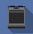 kitchen gas stove the household equipment vector image