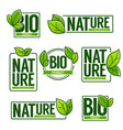 nature and bio product doodle organic leaves vector image vector image