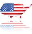 usa map and flag vector image