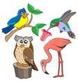 various birds collection 02 vector image