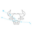 zodiac signs taurus line icon simple element vector image vector image