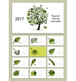 Tropical tree calendar 2017 design vector image