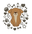 Cute pet cartoon vector image vector image