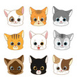 cute smiling cat head collection set vector image vector image