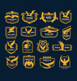 flying eagle icons heraldic symbols vector image