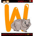 letter w for wombat cartoon vector image vector image
