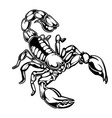 scorpions drawing logo 02 vector image vector image