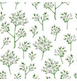 seamless pattern with gypsophila flowers vector image vector image