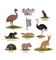 australia animals set in colorful silhouette vector image