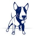 Bull Terrier vector image vector image