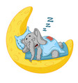 elephant character he sleeps on the moon vector image