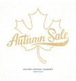 Gold glitter autumn sale lettering on a white vector image