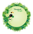 hornbill bird with tropical jungle round frame vector image
